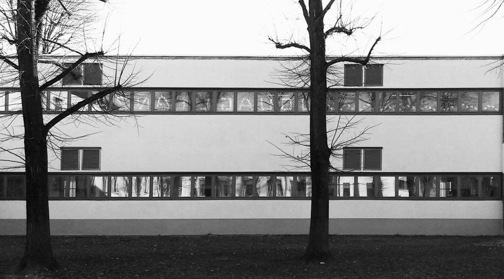 """Scuola primaria """"De Vecchi Fisogni"""": Immagine"""