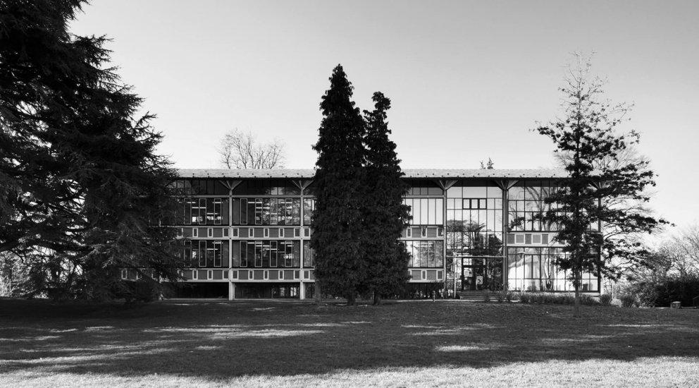 Scuola primaria Parini: Immagine